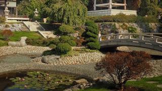 riviere seche jardin japonais