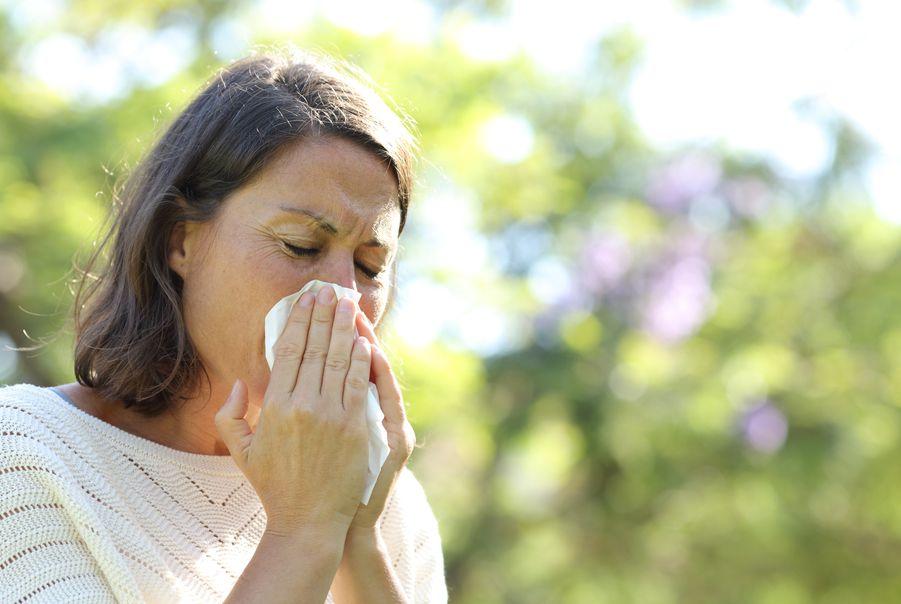 Plantes allergenes a eviter