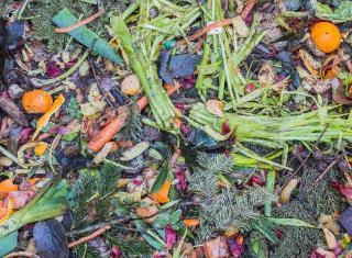 compost pour enrichir sol