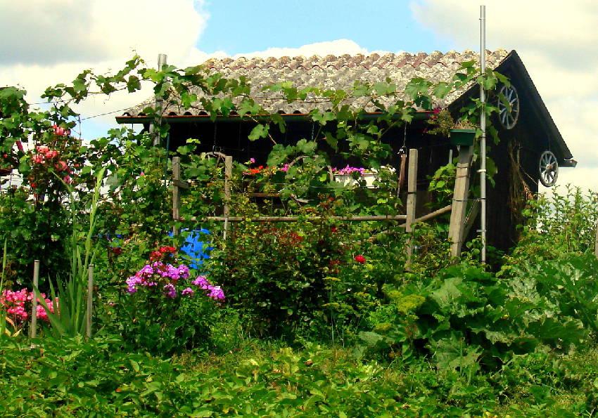 idee deco cabane jardin