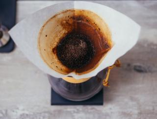 marc cafe plante
