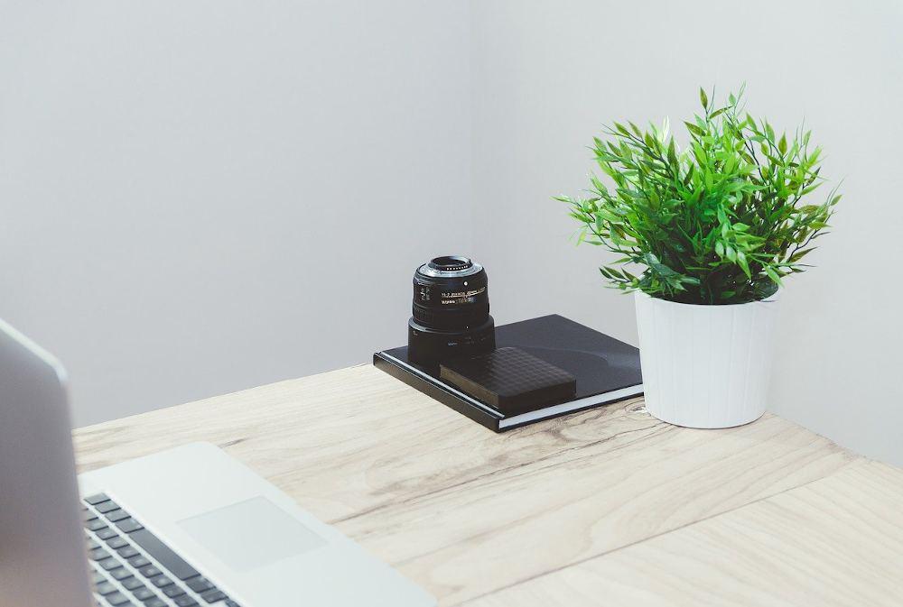 avantage bienfaits plante bureau