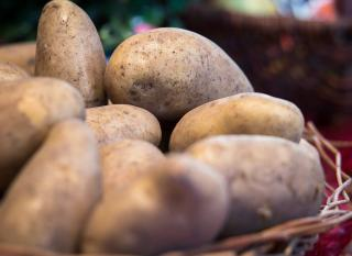 conserver conservation pomme de terre