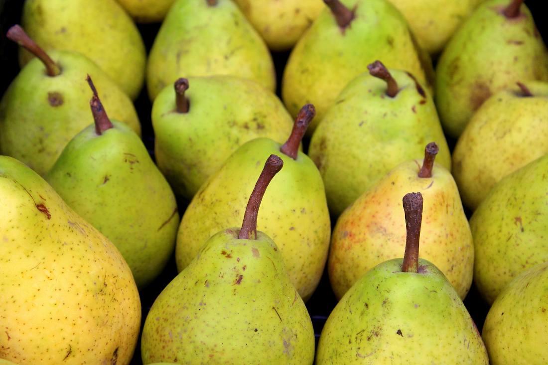 Bien conserver les poires - conservation