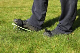 crampon pour aerer pelouse mousse