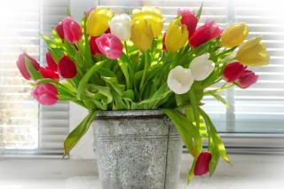 exposition emplacement tulipe bouquet vase