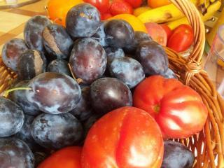 prunierQuetsche prune