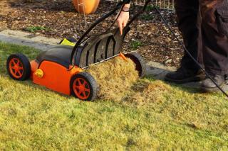 scarifier pelouse mousse