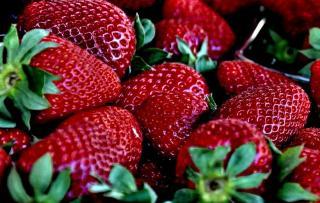 Fraise Cherry Berry fraisier
