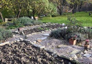que faire en fevrier au jardin