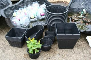 Panier pour plante aquatique