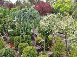 etiquette plante toxique reglementation legislation