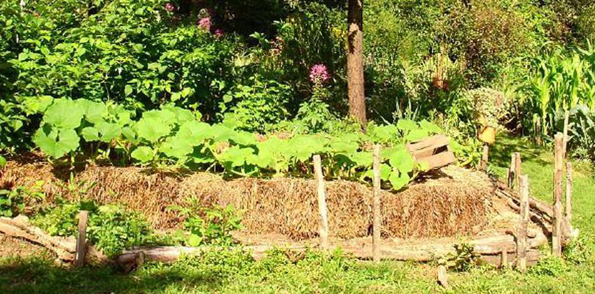 botte de paille legumes