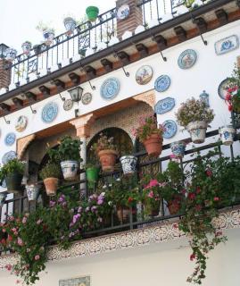 Potée fleurie au balcon