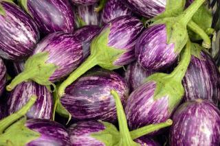 aubergine Listada de Gandia