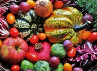 phytonutriment fruits legumes