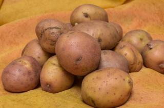 pomme de terre vitamine C