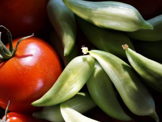 utilisation cyclanthere cuisine