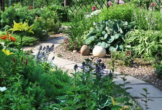 allee jardin massif fleur champetre