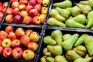 conservation pomme poire