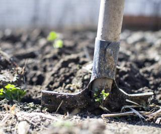 fertiliser sol enrichir automne hiver