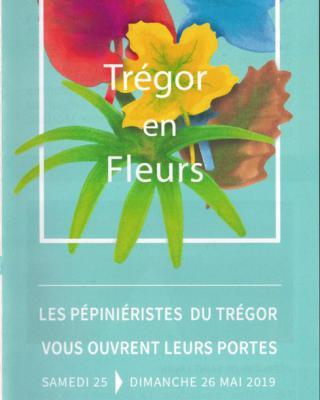 19-Tregor-en-fleurs