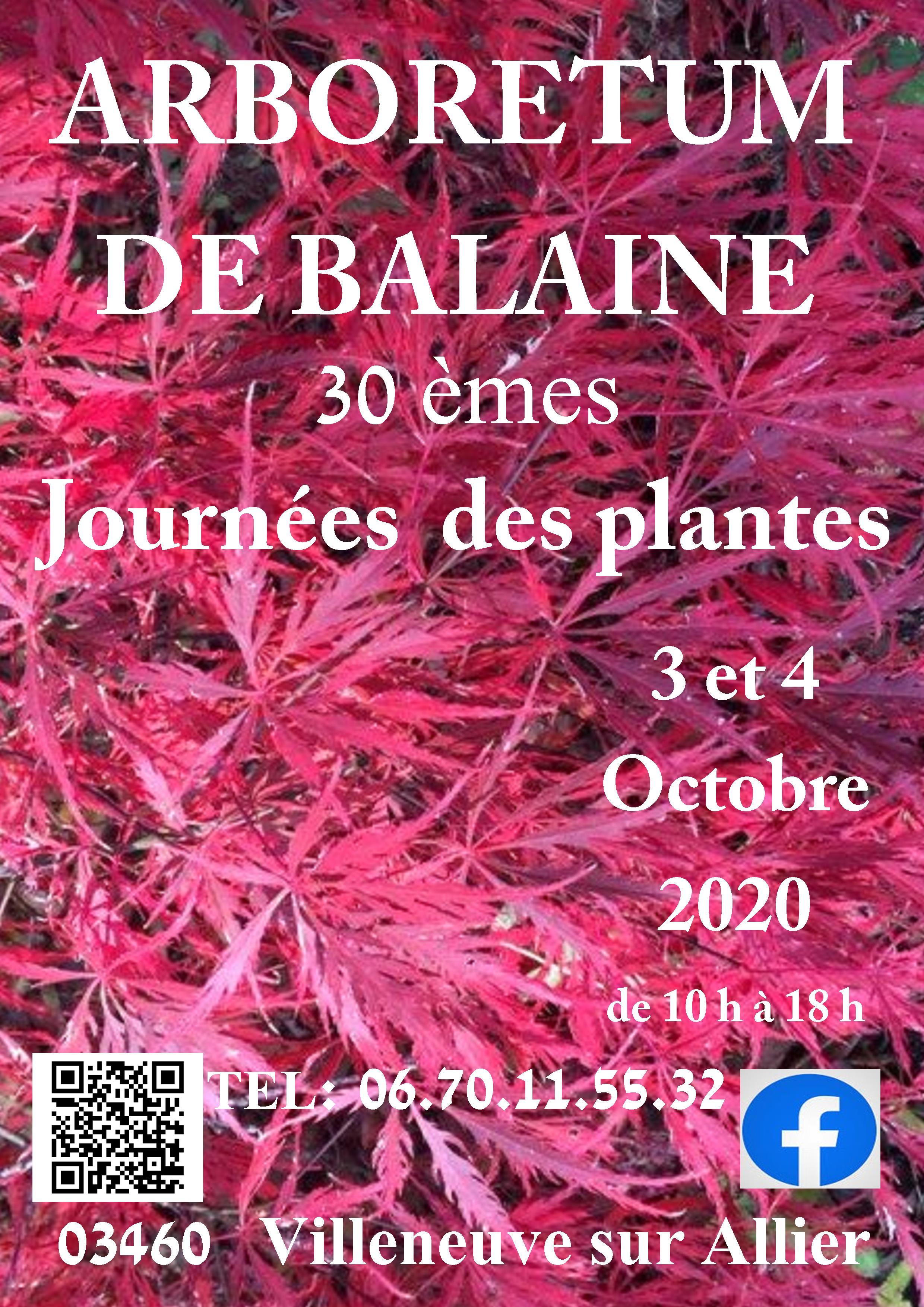 Affiche - Arboretum de Balaine - Fête des Plantes Aglaë Adanson - 3 & 4 octobre 2020