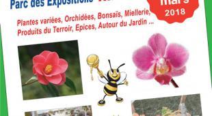 Flyers-AnîmoX-2018-Spécial-Plantes-S178-JMB-web
