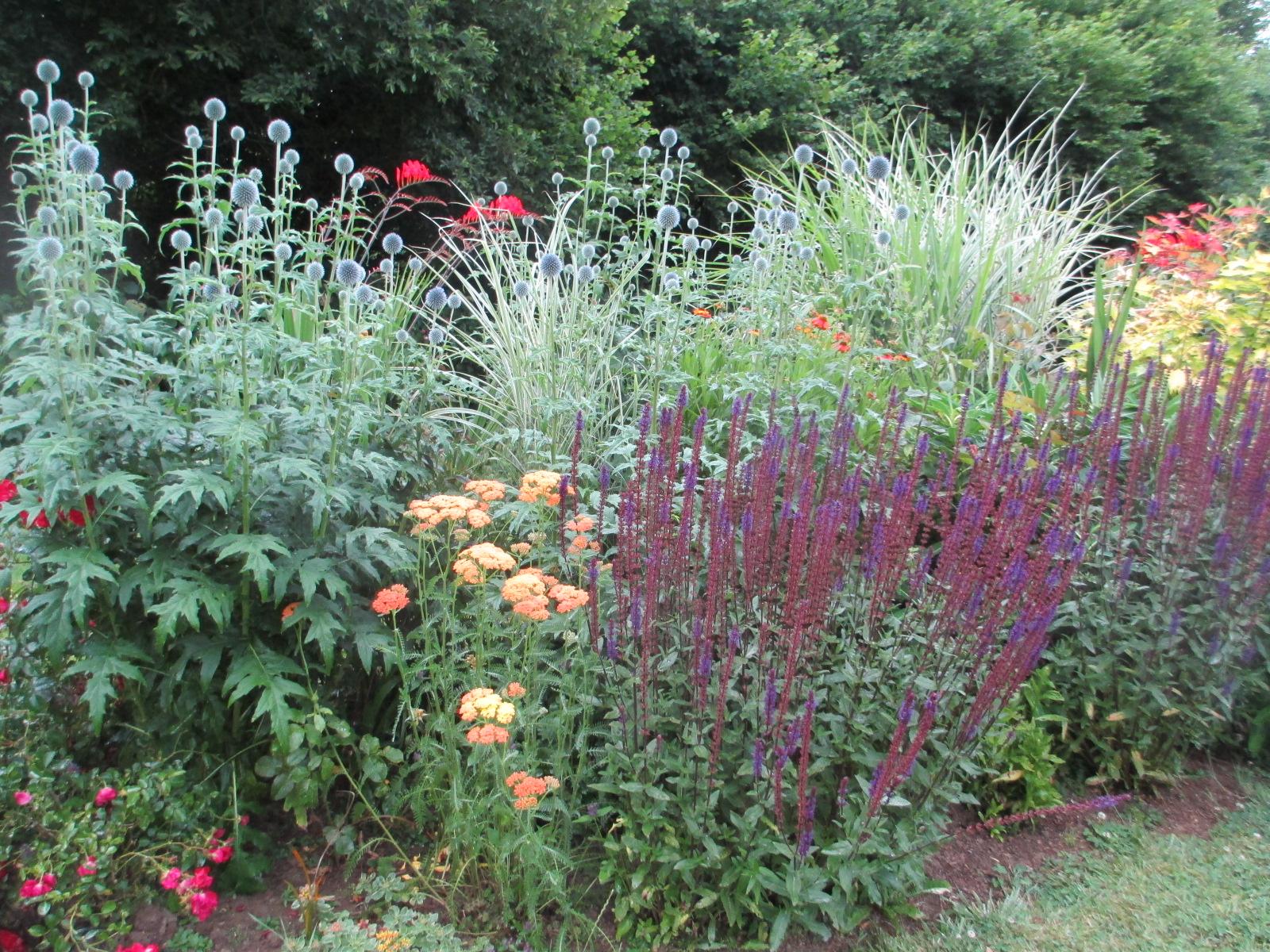 Dessiner son jardin village de saint antoine for Dessiner son jardin