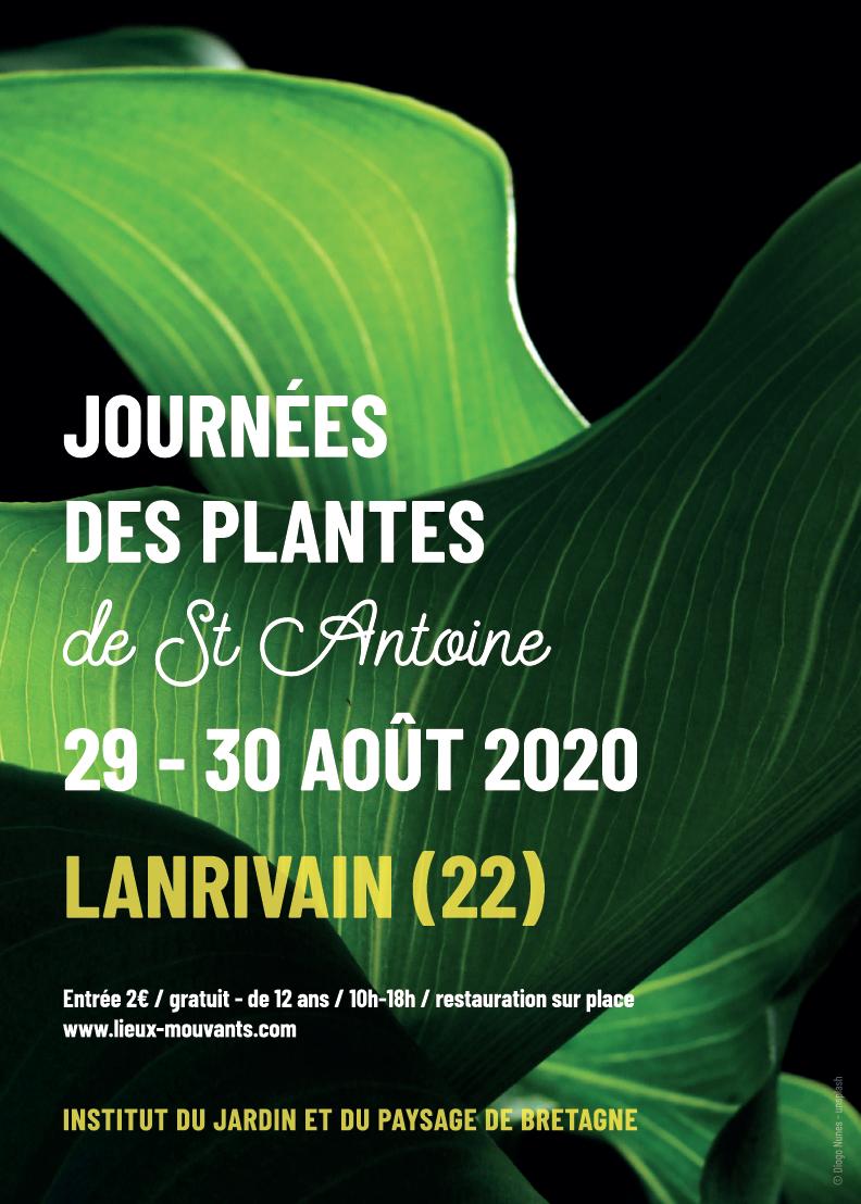 plantes couv